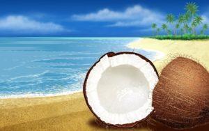 Propiedades del coco: 5 beneficios para todo tu cuerpo