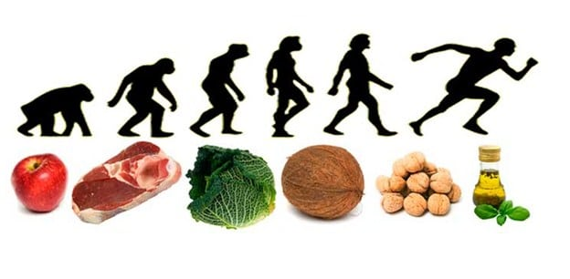 En que consiste una dieta paleo